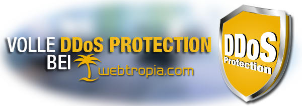 DDoS_Protection